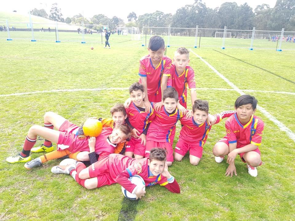 rowville-eagles-juniors
